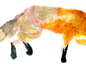 fox, painting, and watercolour painting image