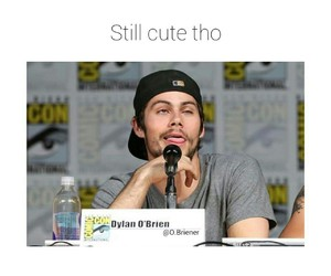 sdcc, teen wolf, and dylan o'brien image