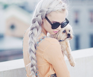 hair, hairstyle, and dog image