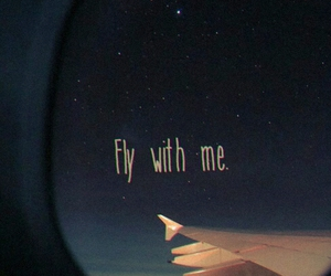 couples, fly, and night image