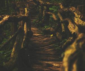 beautiful, nature, and pathway image