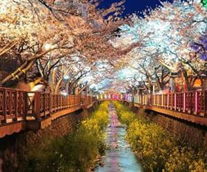 korea and beautiful image