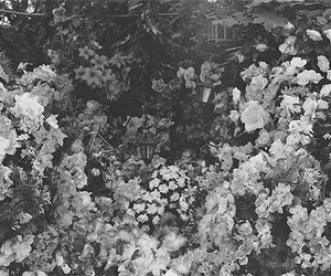 flowers, cross, and vintage image