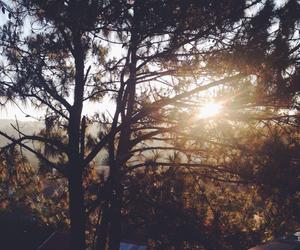 beautiful, nature, and rays image