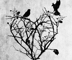 heart, bird, and art image