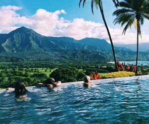 summer, pool, and tropical image