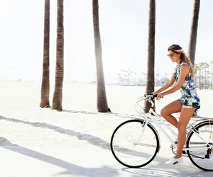 beach, bicycle, and palm trees image
