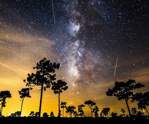 beautiful, captivating, and nature image