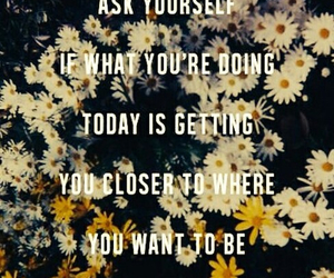 quote, flowers, and tomorrow image