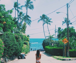 direction, hawaii, and paradise image