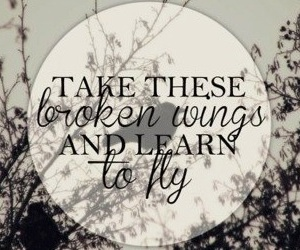 broken wings and quote image