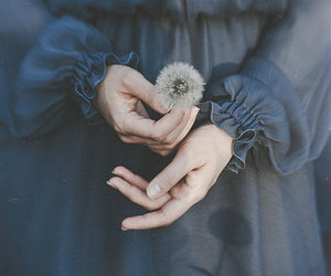 flowers, dandelion, and dress image