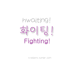 hangul, fighting, and korea image