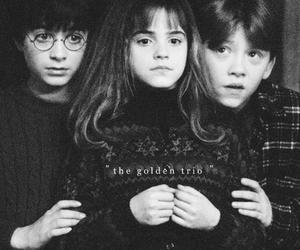 harry potter, black and white, and hermione granger image