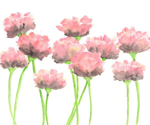flowers, pink, and watercolor image