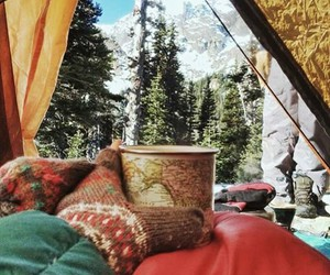camping, outdoors, and pines image