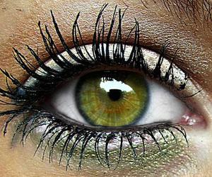 green, eye, and makeup image