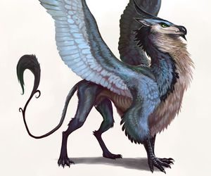 animal, fantasy, and wings image