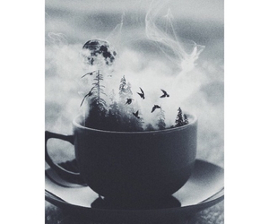 bird, cup, and magic image