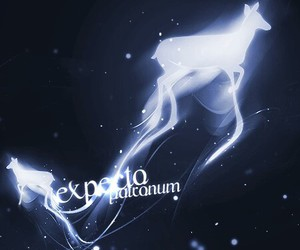 patronum, potter, and expecto image