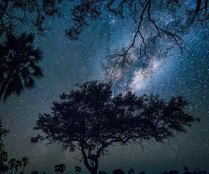 stars, amazing, and night image