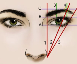 eyebrows, face, and tutorial image