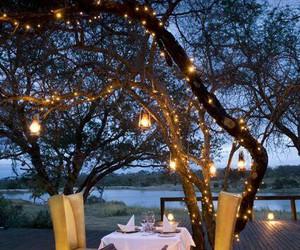 romantic, light, and dinner image