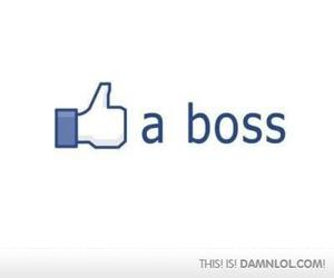 boss and facebook image