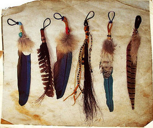 feather, indian, and vintage image