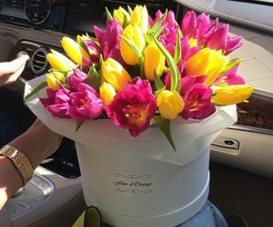 flowers, Best, and luxury image