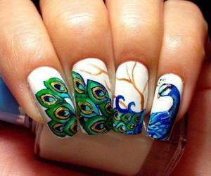 nails, peacock, and art image