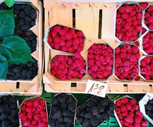 berries, colorful, and delicious image