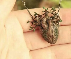heart, necklace, and nature image