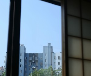sky and windows image