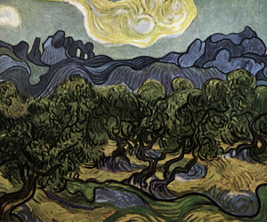 van gogh, vincent, and the olive trees image