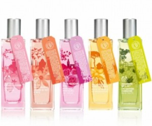 body shop and perfume image