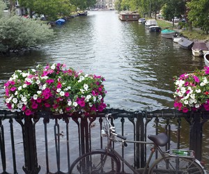 amsterdam, canal, and flowers image