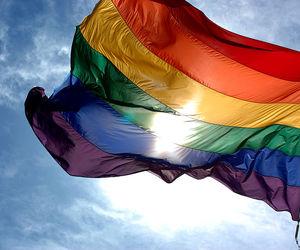 gay, flag, and lesbian image