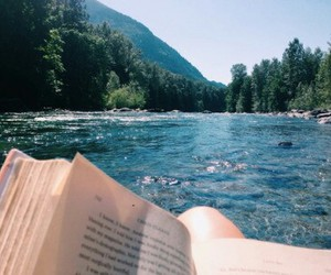 book, summer, and nature image