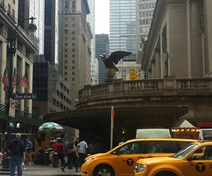ave, cabs, and newyork image