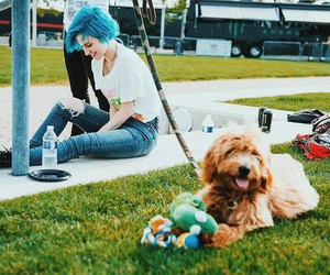 hayley williams, paramore, and animal image