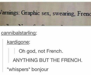 funny, french, and tumblr image