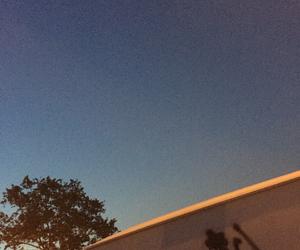 blue, sky, and tree image