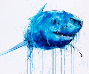 sharks and art image