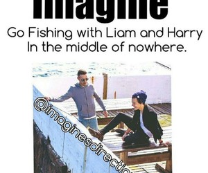 imagine, liam payne, and Harry Styles image