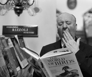 alfred hitchcock, birds, and book image