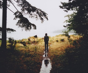 nature, forest, and boy image