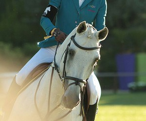 champion, equestrian, and show jumping image