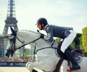 horse, jumping, and paris image
