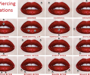 piercing, lips, and snake bites image